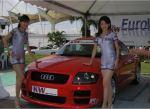 Audi-TT-8N-sexy-models